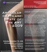 Articular Cartilage: State of the Art 2009