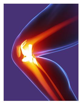 Dr Thomas Youm   Orthopaedic Surgeon   Joint Preservation